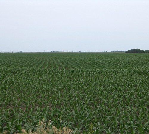 south dakota farm land for sale