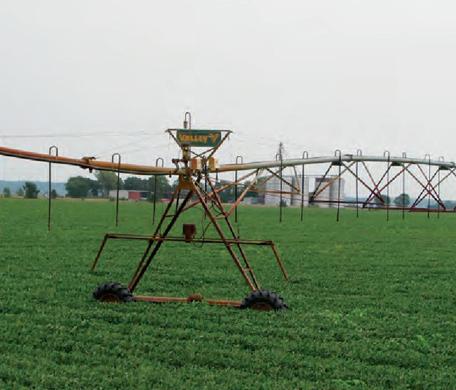 Meckling Farmland